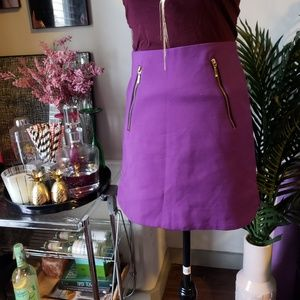 Zara Purple Mini Skirt